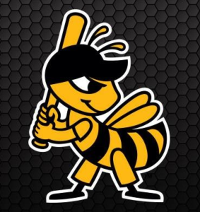 Bees End Season With Loss