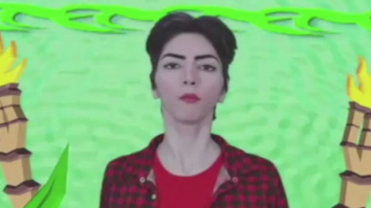 Family of alleged YouTube shooter warned police 'she might do something'