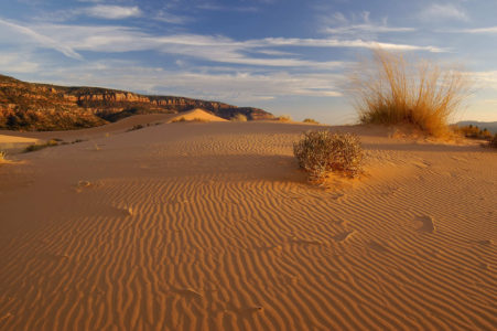 13-year-old boy dies at Coral Pink Sand Dunes State Park