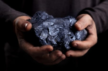 Interests widen in legal fight over coal-export terminal