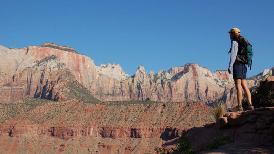 Search and rescue operation underway in Zion National Park
