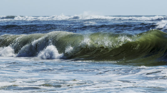 13-year-old boy bitten by possible shark off Fire Island, authorities investigating a second suspected attack
