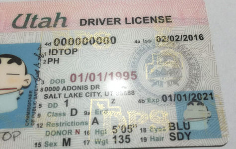 Division Illegally Shares Data Utah – Audit Mid-utah License Driver Radio
