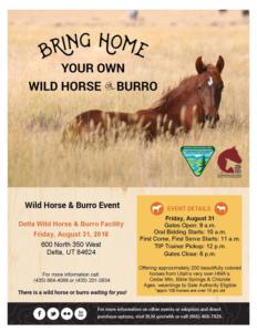 Delta Wild Horse and Burro Event at Delta Wild Horse and Burro facility