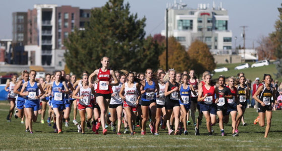 Cross Country State Championship Roundup