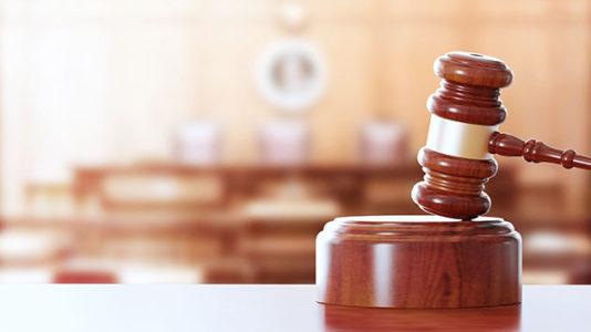Three DxE members take plea deal in turkey theft