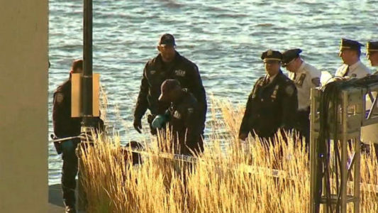 Two women's bodies bound together discovered floating in New York's Hudson River: Police