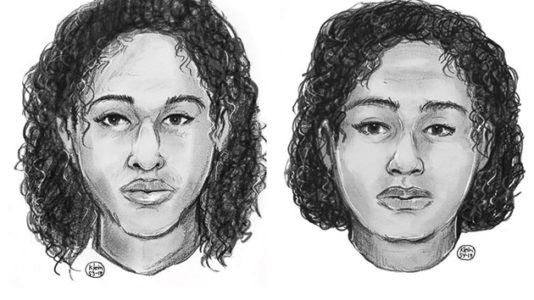 Sisters found dead in Hudson River preferred suicide over returning to Saudi Arabia: Police