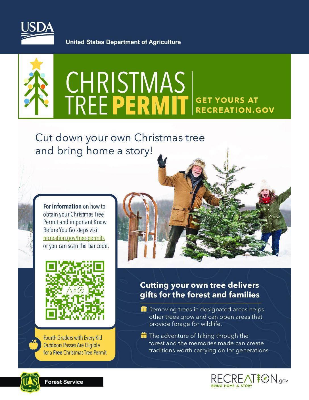 Manti La Salle Christmas Tree Permits – Mid Utah Radio